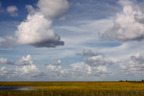 FL Everglades
