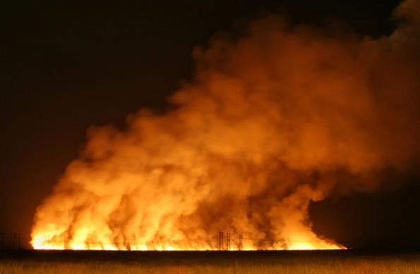 Wildfire, Florida Everglades