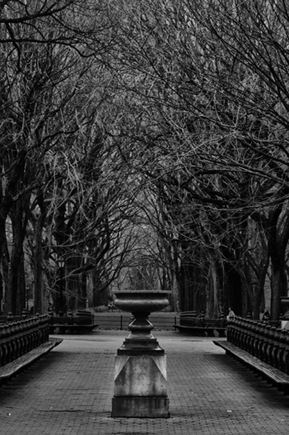 Central Park Statue and Trees BW_6267_625 H