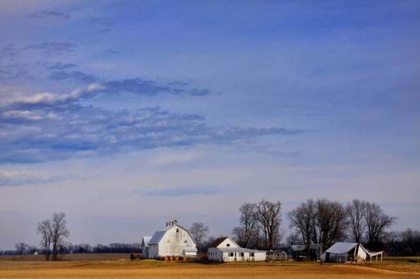 OH White Farm Sat_7524