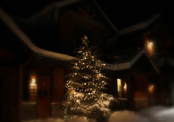 Lit Tree, Winter Park_2