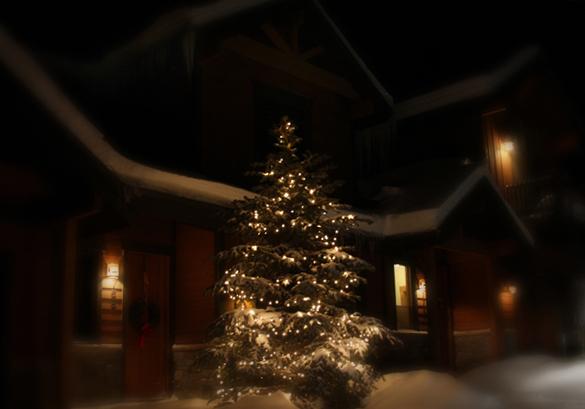 Lit Tree, Winter Park_2