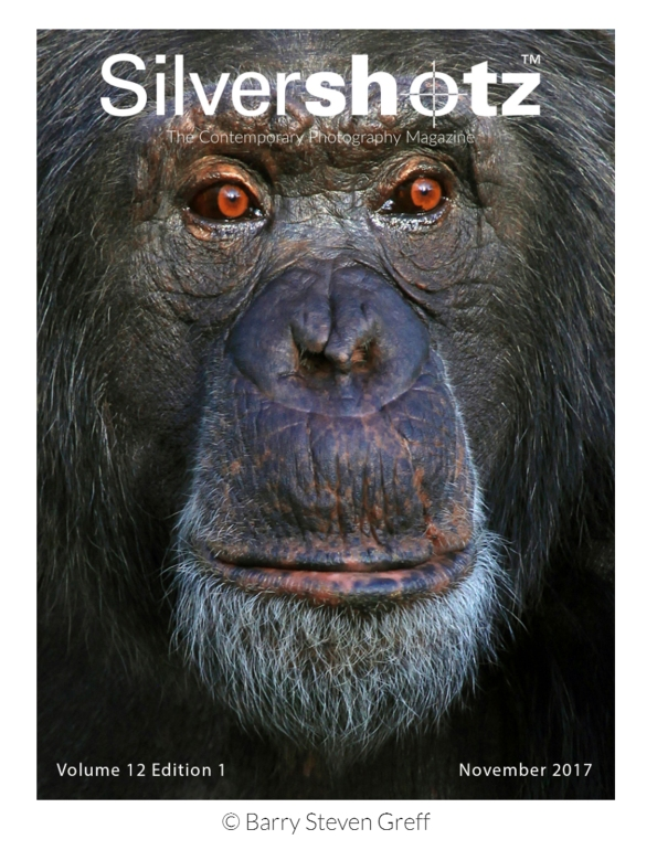 ChimpCover